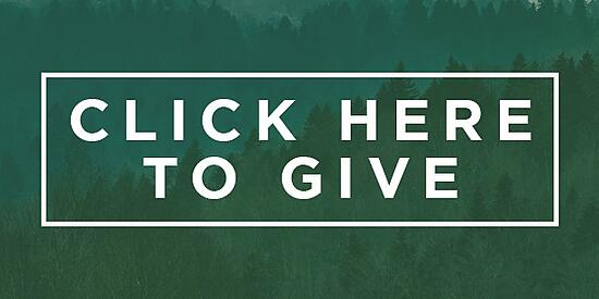 Click_here_to_give_button